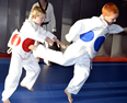 2014 Taekwondo Winter Promotion Exam