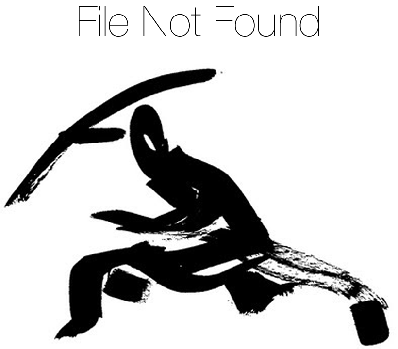 File Not Found Ninja